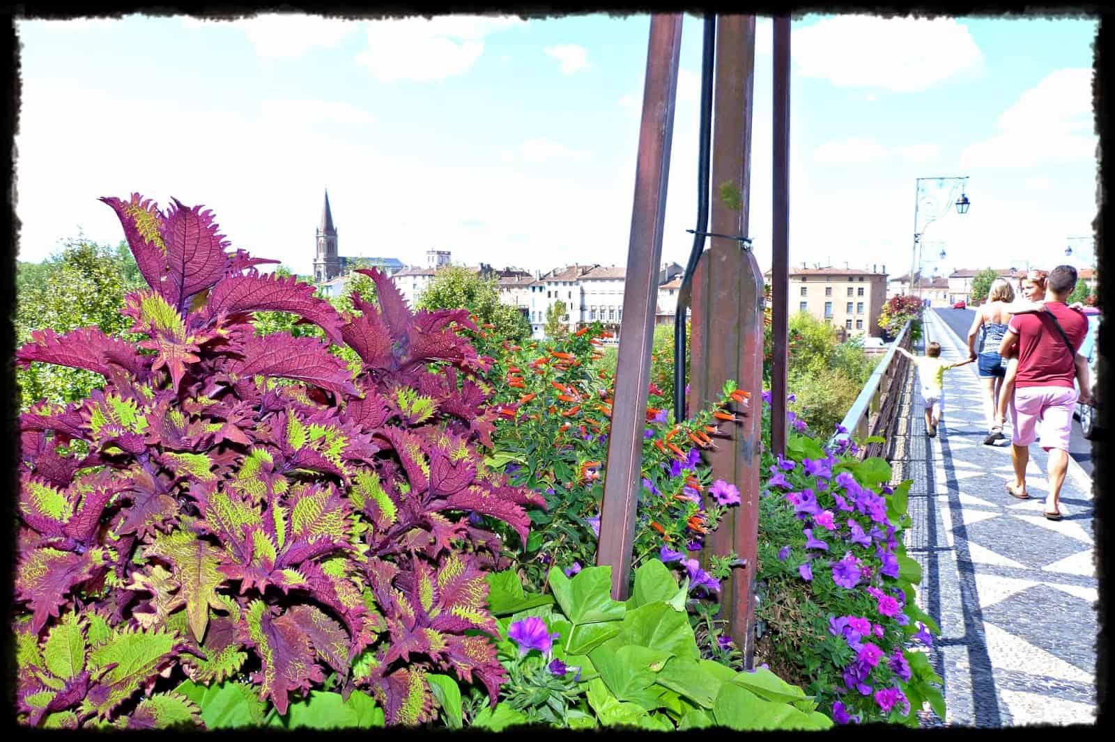 Montauban una ma ana entre un viejo puente y for O jardin ideal route de montauban bessieres