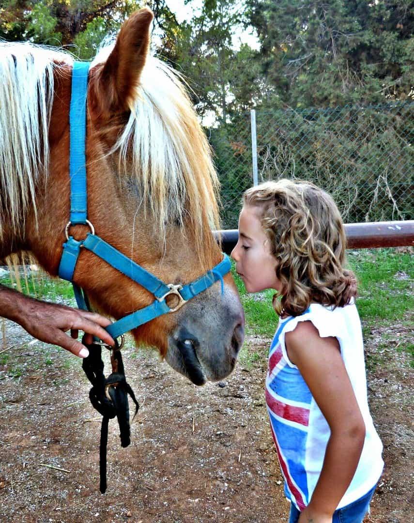 las 7 actividades que no te puedes perder con tus hijos en IBIZA. 2ª parte. España
