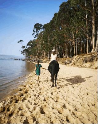 Montar a caballo en Laredo