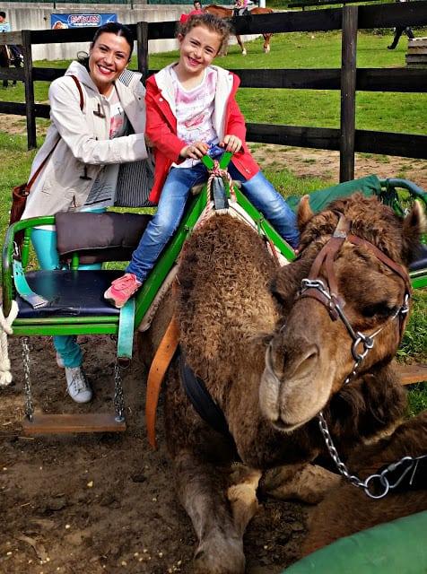 Fin de semana con niños en Soano, Cantabria. Cantabria