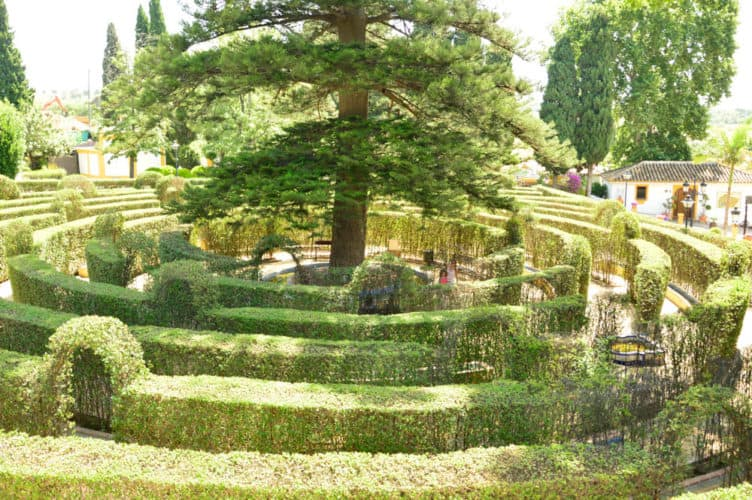 Precioso Jardín Botánico Molino de Inca