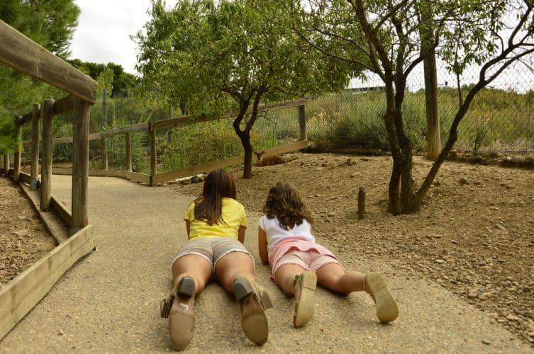 parque-temático-sendaviva-navarra-vacaciones-con-niños-viajar-con-niños-planes-con-niños