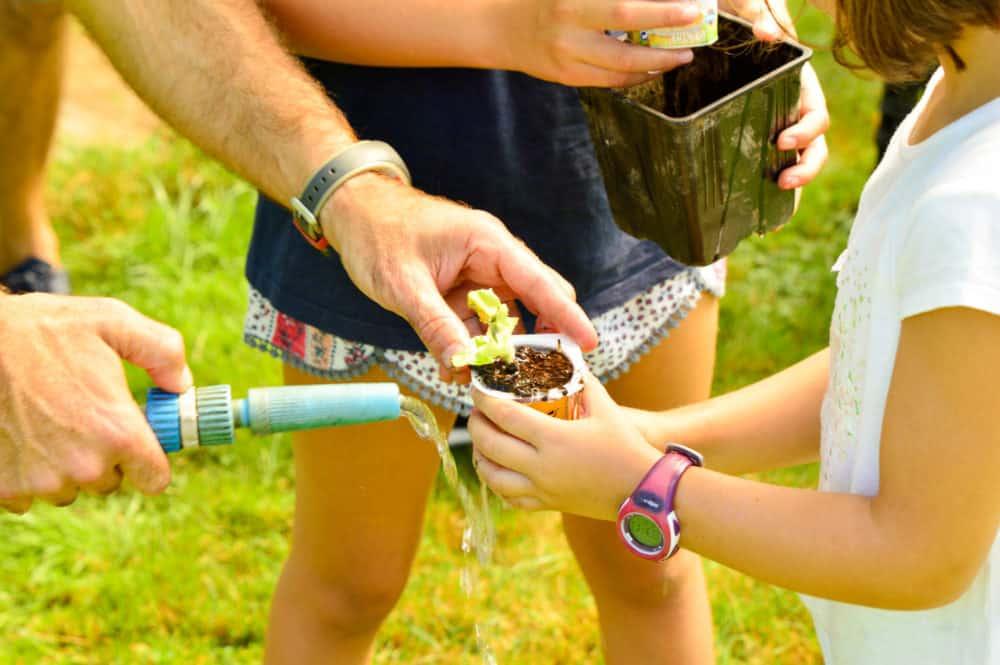 Planes-con-niños-Cantabria-Arándanos-Valle-de-Machucón-granjas-con-niños