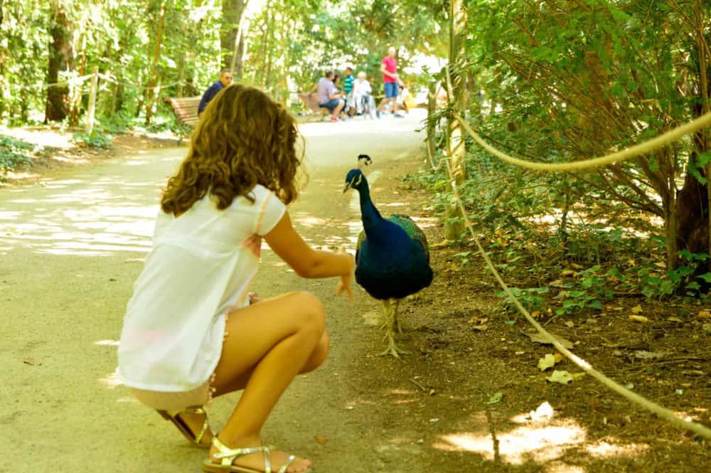 planes-con-niños-en-Valladolid-parque-Campo-Grandeplanes-con-niños-en-Valladolid-parque-Campo-Grande