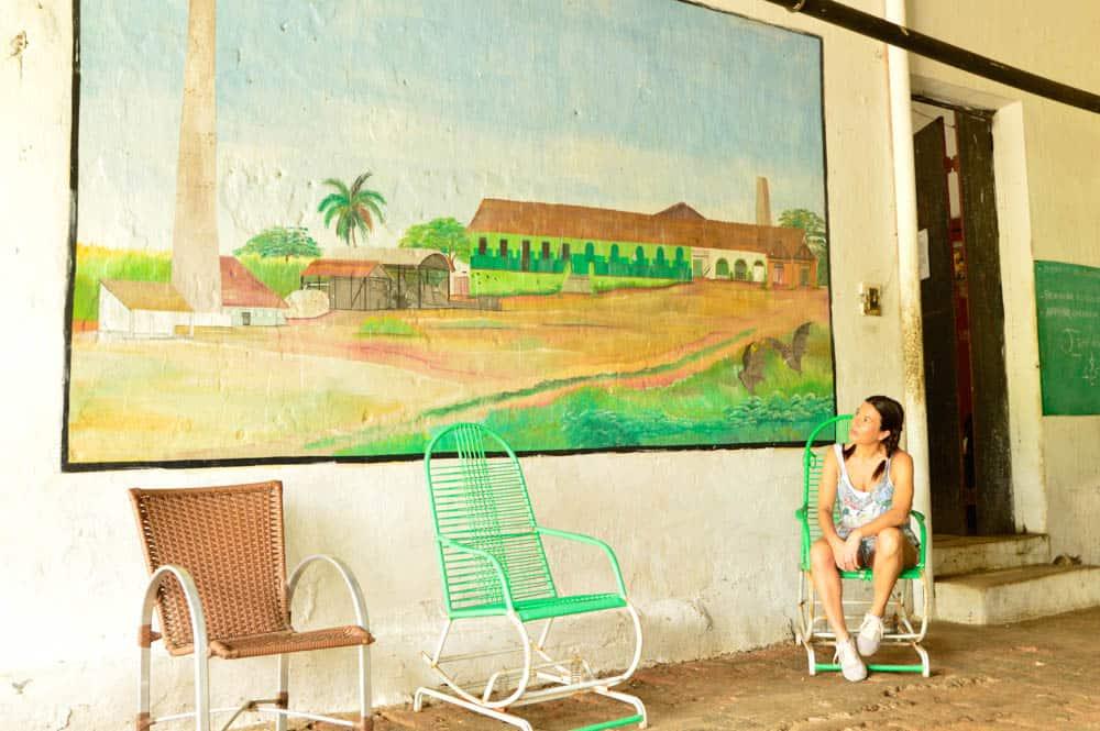 La ruta verde del Café en Ceará. Brasil sostenible América