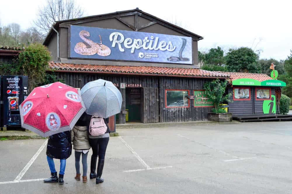 Reptiles en Parque de Cabárceno en Cantabria