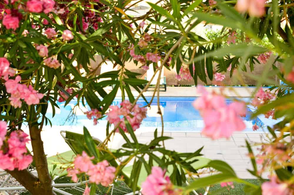Viajandoconmammi-Viajar-con-niños-Vacaciones-familia-planes-con-niños-Casa-Rural-los-Laureles-Toledo-Molinos-Consuegra-5