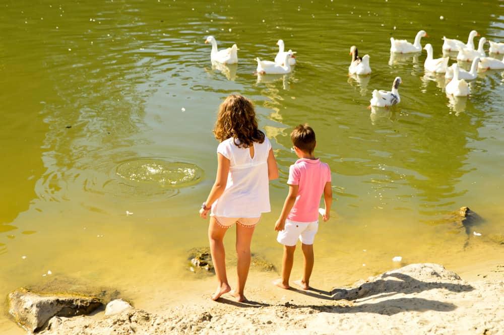 Viajandoconmammi-Viajar-con-niños-Vacaciones-familia-planes-con-niños-playa-de-valladolid-la-pera-limonera
