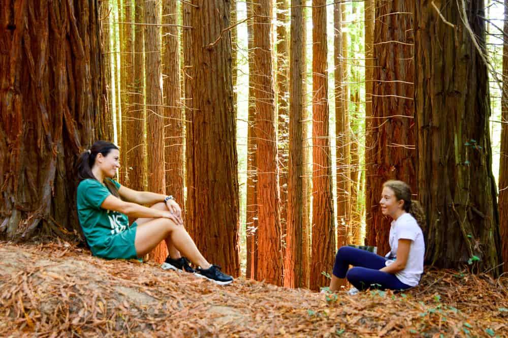 Viajandoconmammi-Viajar-con-niños-Vacaciones-familia-planes-con-niños-Bosque-Secuoyas-Cabezón-de-la-sal-Cantabria-árboles