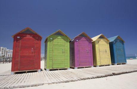 Disfruta de unas vacaciones en Alicante, te sorprenderán. Parques y Jardines con niños