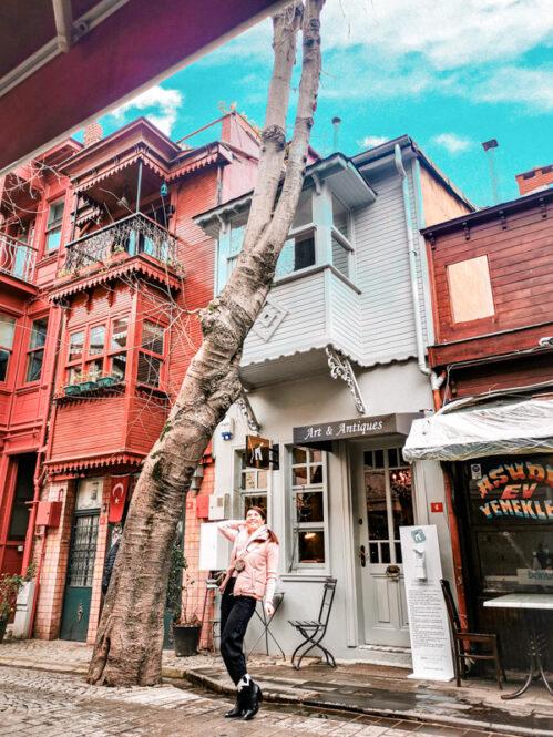 Viajandoconmami-Viajar-Estambul-Turquía